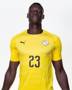 Альфред Гомис Сенегал: профиль игрока ЧМ 2018